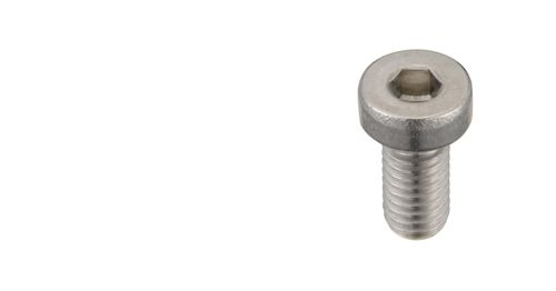A2 Stainless Steel Bolt