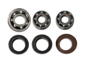 SOLAS Seal and Bearing Kit for all Solas KGX Pump 1608158001